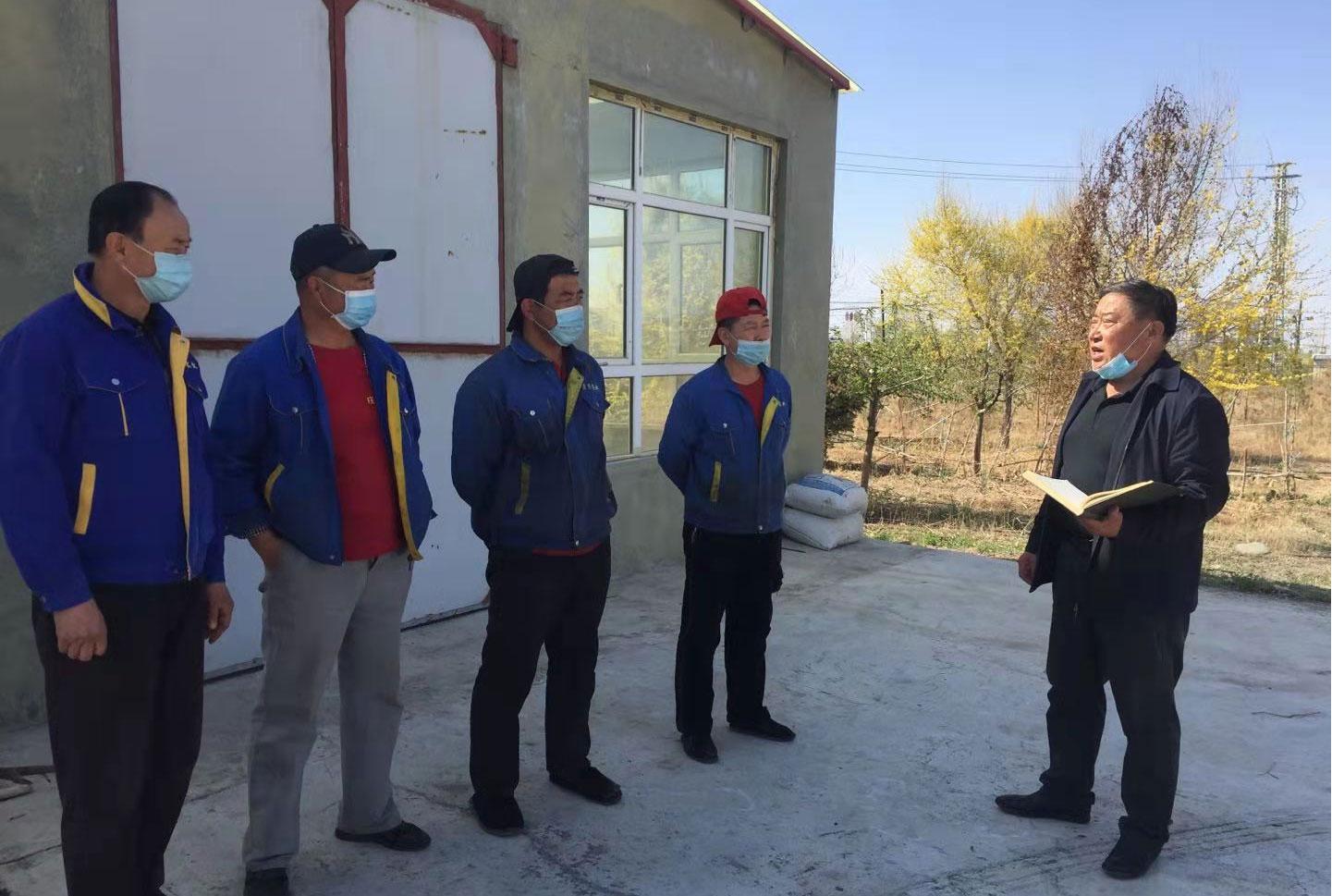 新疆红花籽油生产